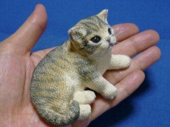 手のり猫 ☆☆もも様 御予約品につきご購入できませんの画像