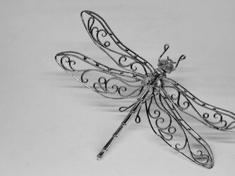 dragonfly pin broochの画像