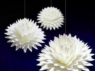 咲くようにひらく 花のメッセージカード〈ダリア〉 forバースデー・ウェディング・アニバーサリーの画像