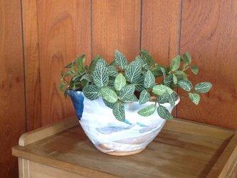 楕円の植木鉢の画像