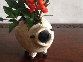 羊 No.49の画像