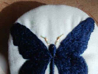 艶っぽい紺の蝶々の画像