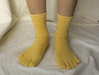玉葱染め 絹5本指靴下の画像