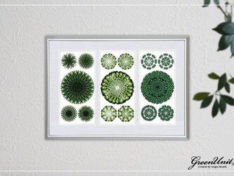 Green Flowers #3の画像