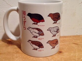 マグカップ★姫ウズラ★鳥の画像