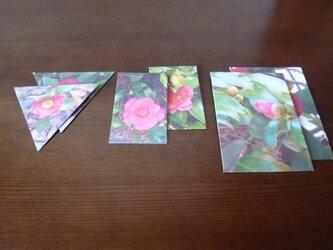 封筒6点~かんつばき2~の画像
