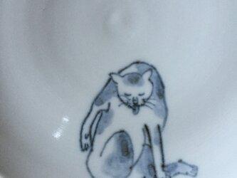 染付5寸猫皿 28の画像