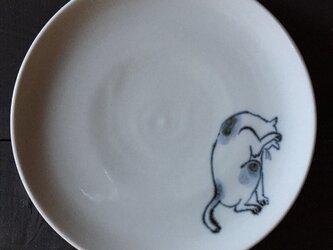 染付5寸猫皿 31の画像