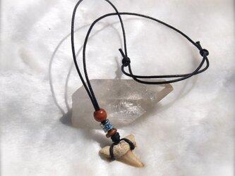 お守りシリーズ☆サメの化石のネックレス4の画像