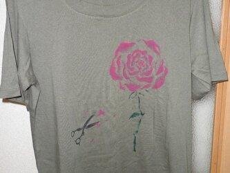 薔薇へのプロポーズの画像