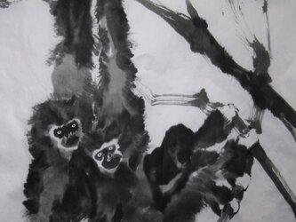 親子猿の画像