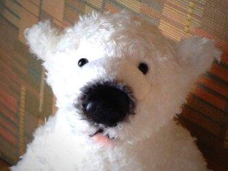 白熊(立ち型)の画像