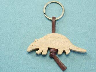 コアリクイ 木のキーリングの画像
