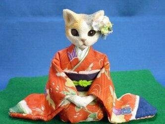 晴れ着に花簪の猫のお嬢さんの画像
