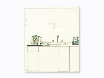 「プランツのあるキッチン」の画像