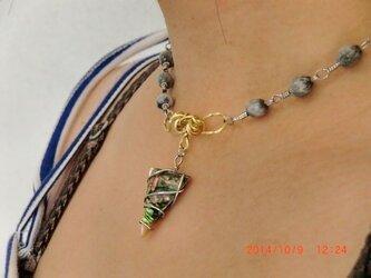 じゅず玉とメキシコ貝のネックレスの画像
