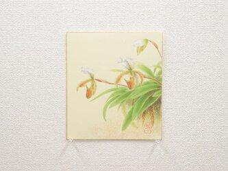 日本画色紙 「パフィオペディラム」 値下げ再出品の画像