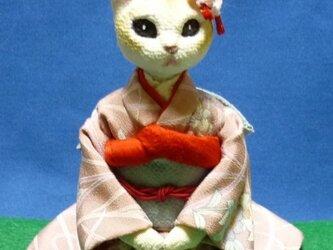 しっかり者のお姉さん猫さんの画像