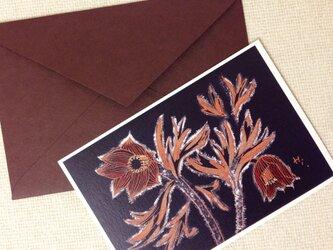 封筒付きカード オキナグサ 2セットの画像
