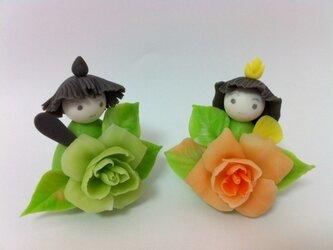 バラの花のお雛様の画像