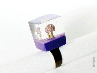 木リング : キューブ (紫 type2)の画像