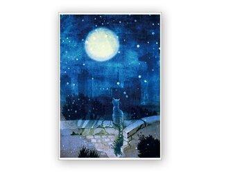 A4ポスター・月を見ている猫の画像