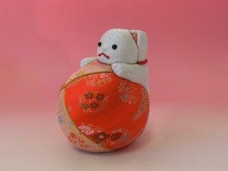 福猫まりあそびの画像
