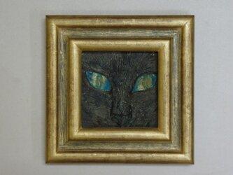 猫又 碧 (ねこまた あお)の画像