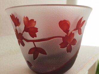 受注製作 :金魚と桜と猫のおちょこ ガラスのおちょこの画像