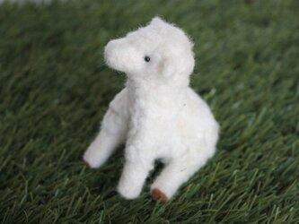 羊毛フェルト おすわり羊(帽子付き)の画像