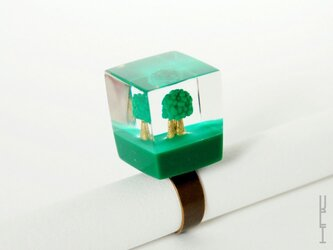 木リング : キューブ (フォレスト type1)の画像