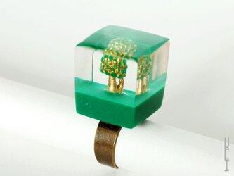 木リング : キューブ (フォレスト type2)の画像