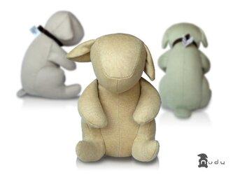カシミア Dog nudyの画像