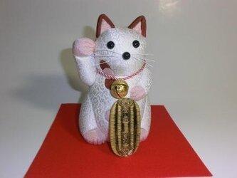 小判猫の画像