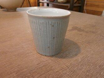 シノギカップの画像