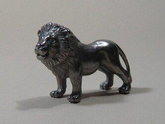 ライオン(親-2)の画像