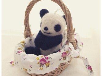 お願いはにかみパンダの画像