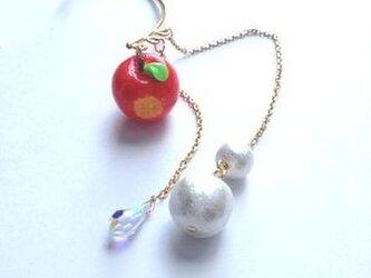 蜜りんご&スワロイヤーフック Snow Whiteの画像