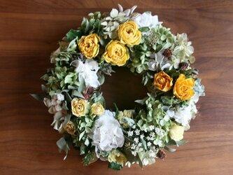 バラと紫陽花のリース イエローの画像