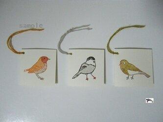 ミニカードセット〈春をつげる 鳥〉の画像