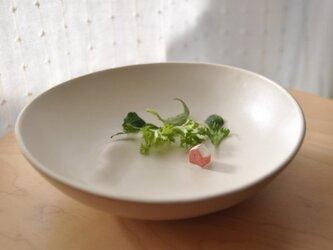 小さな庭 (サラダの器)マットボウルの画像