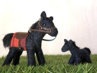 羊毛フェルト 青毛馬の親子の画像