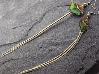 羽根のピアス オリジナル・フェザーピアス ロング サージカルステンレスの画像