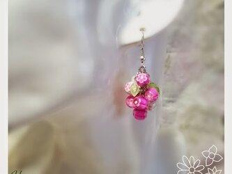 花束ピアス ホムポムの画像