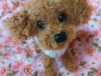 編みぐるみ(プードル犬)3の画像