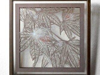 切り絵 楓 二枚重ね額縁 透明背景 日本画顔料 濃灰の色渋紙の画像