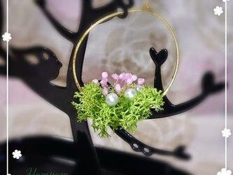 春・お花畑ループピアス1 ホムポムの画像