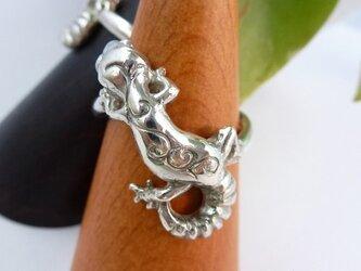 ヒョウモントカゲモドキの指輪 模様入りの画像