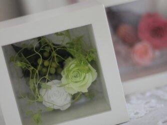 プリザーブドフラワー ガラスカバー付 キューブボックスの画像