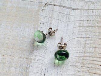 緑色を集めたガラスのピアスの画像